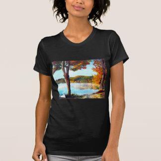 Lake Champlain T-Shirt