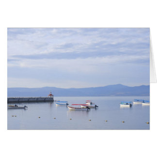 Lake Chapala Skiffs and Pier Card