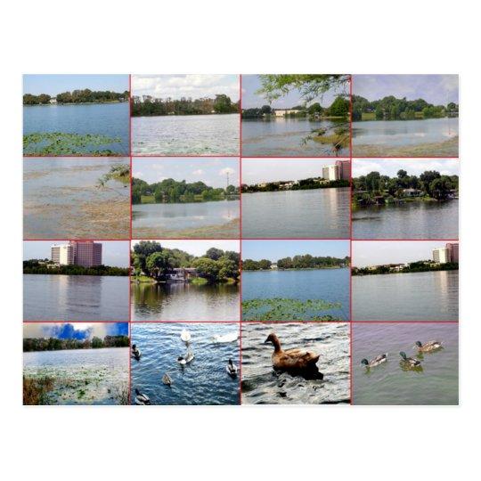 Lake Collage Postcard