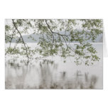 Lake Crescent   Olympic National Park, WA Card