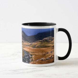 Lake District  - Eskdale Mug