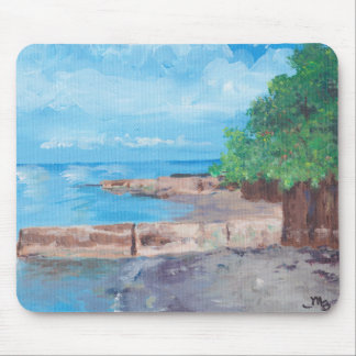 Lake Erie Mouse Pad