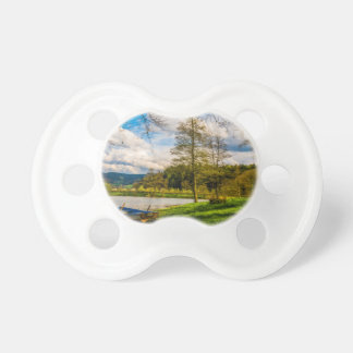 Lake Forest Landscape Pacifier