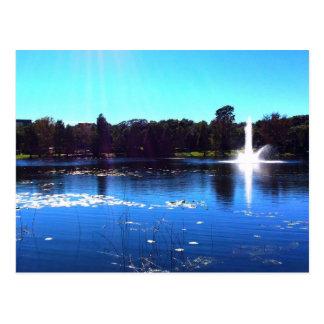 Lake Lilly 2 Postcard