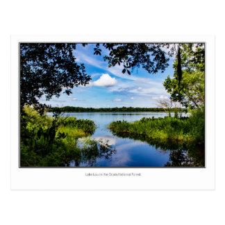 Lake Lou Postcard