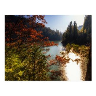 Lake McCloud Postcard