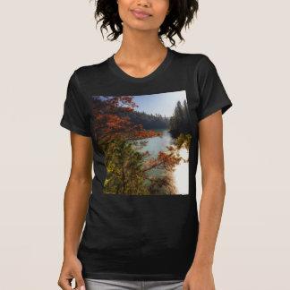 Lake McCloud T-Shirt