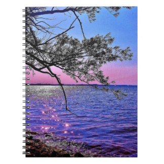 Lake Mendota View Spiral Notebooks