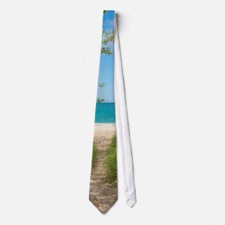 Lake Michigan Tranquility Tie