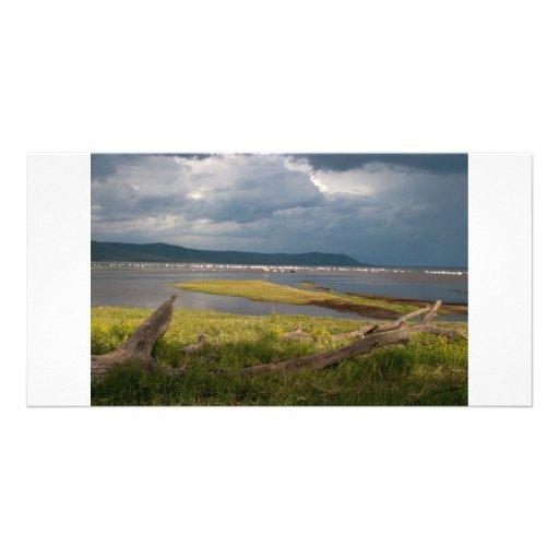 Lake Nakuru with Flamingos Customized Photo Card