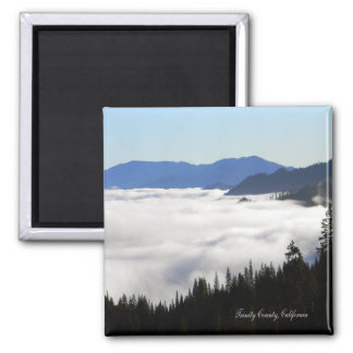 Lake of Fog through trees... Magnet