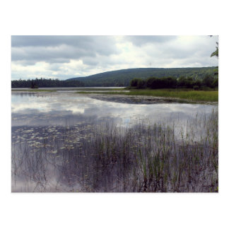 Lake of the Assumption Postcard