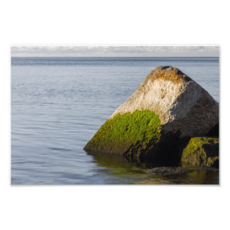 Lake Ontario Shore Photo Print