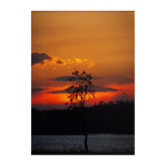 Lake Paradise sunset Acrylic Wall Art
