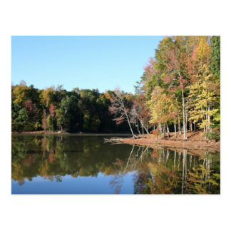 Lake Reflection of Orange Fall Leaves & Blue Skies Postcard