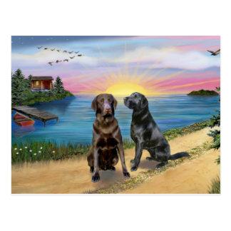 Lake Road - Two Labrador Retrievers (Choc-Blk) Postcard
