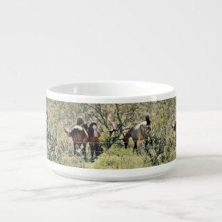 Lake Saguaro Mustangs Chili Bowl