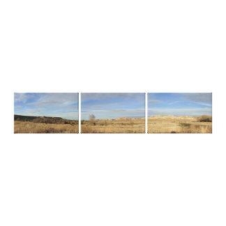 Lake Scott State Park Kansas Panoramic Stretched Canvas Print