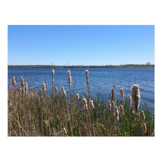 Lake Simcoe Postcard