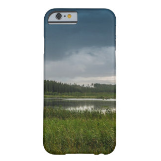 Lake storm barely there iPhone 6 case