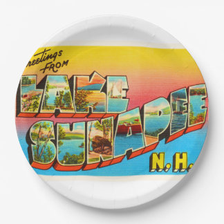 Lake Sunapee New Hampshire NH Old Travel Souvenir 9 Inch Paper Plate