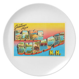 Lake Sunapee New Hampshire NH Old Travel Souvenir Party Plates