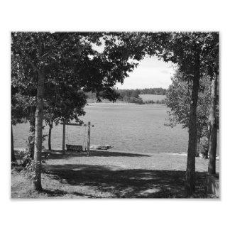 Lake Swing Photo Art