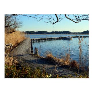 Lake Teganuma: Abiko, Japan Postcard