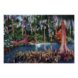 Lake Wales Florida Cypress Swamp and Boat Poster