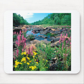Lake Wisconsin River Ice Age Reserve Wisconsin Mousepads