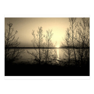 Lakefront trees and sunset postcard