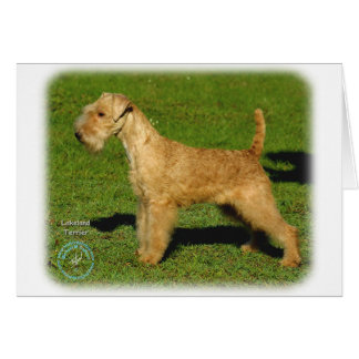 Lakeland Terrier 9P002D-026 Card