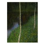 Lakeshore with Birches - Gustav Klimt Post Card
