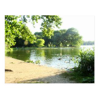 Lakeside Splendor Postcard