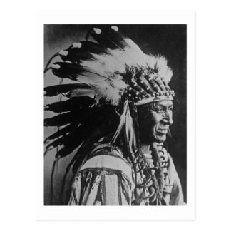 Lakota Sioux Vintage Chief White Swan Postcard