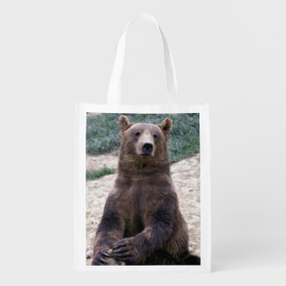L'Alaska, Ursus du sud-est d'ours de Brown de Sac Réutilisable D'épcierie