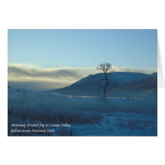 Lamar Valley Yellowstone National Park Blank Card
