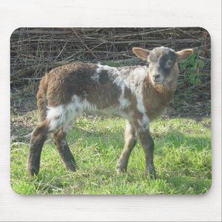 Lamb 2012: SusannaDuffy Mouse Pad