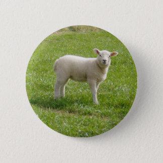 Lamb 2 Inch Round Button