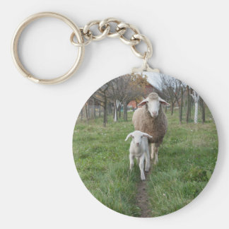 Lamb and sheep basic round button keychain