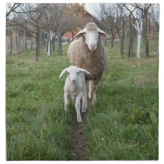 Lamb and sheep napkin