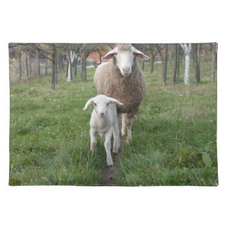 Lamb and sheep placemat