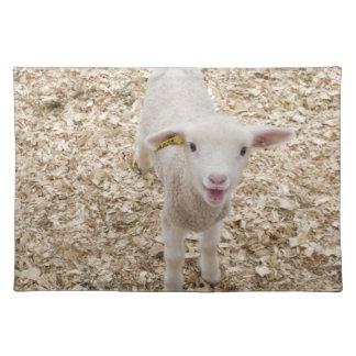 Lamb Placemats