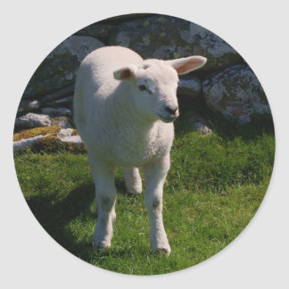 Lamb Round Sticker