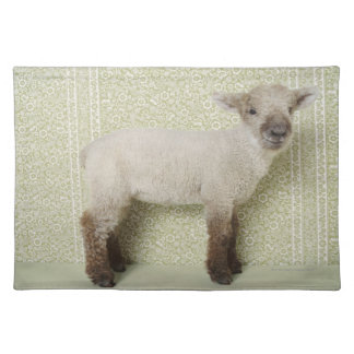 Lamb Standing Indoors, and Floral Wallpaper Placemats