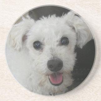 Lambchop the Poodle Coasters