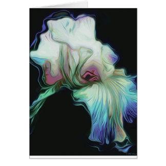 Lambent Bearded Iris Blank Card w White Envelope