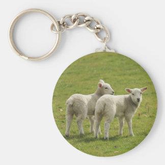 Lambs Basic Round Button Keychain