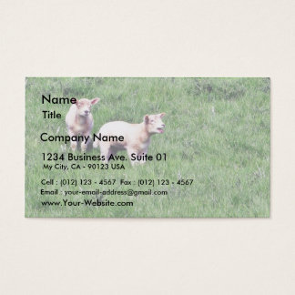 Lambs Sheep Business Card