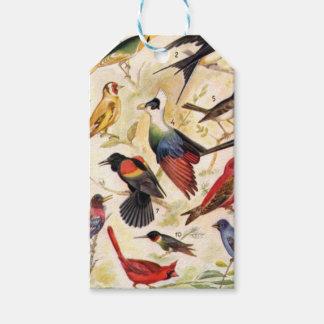 Lamina Birds Gift Tags